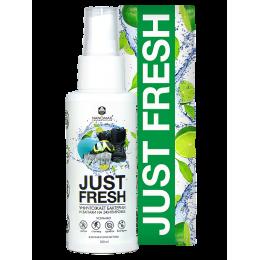 Nanomax Just Fresh дезодорант-освежитель для экипировки 100 мл